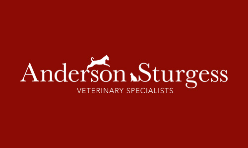 Anderson Sturgess: Logo Design (reversed out)